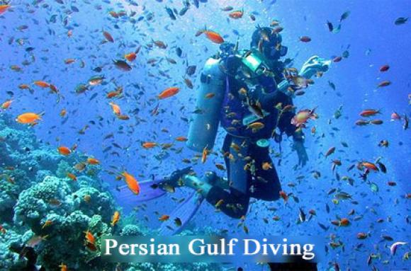 Persian Gulf Diving